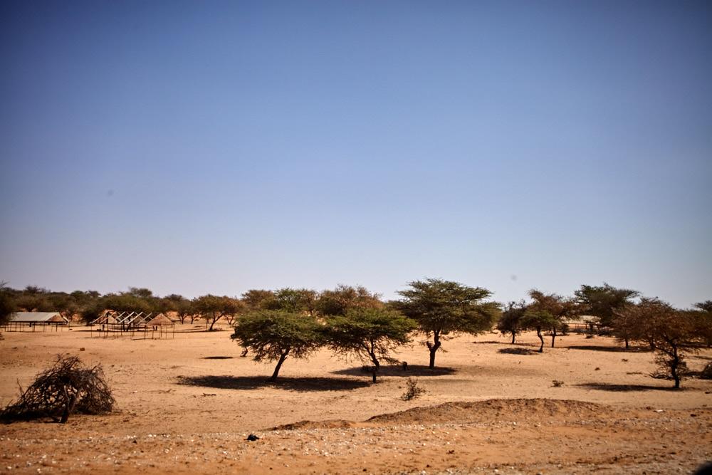 Sahel Zone