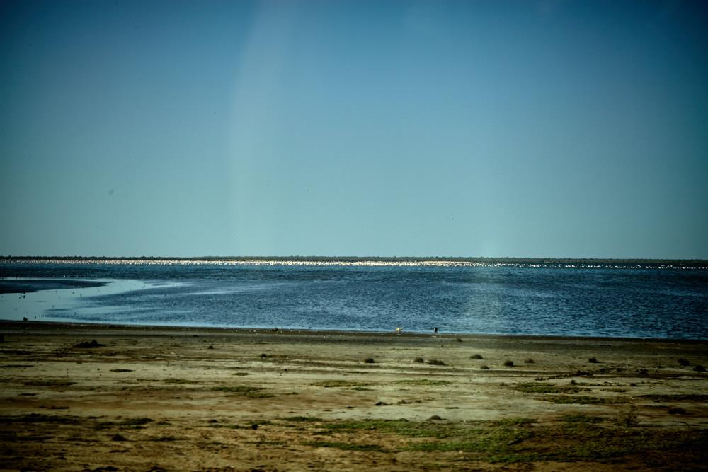 Der Senegal-Fluss